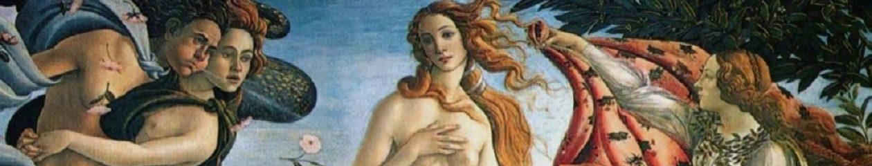 Venus Hair and Beauty